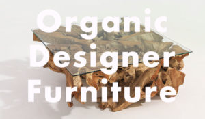 Organic Designer Furniture