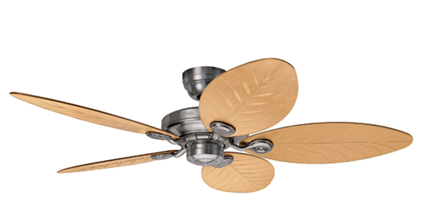 Hunter Ceiling Fan Outdoor Elements
