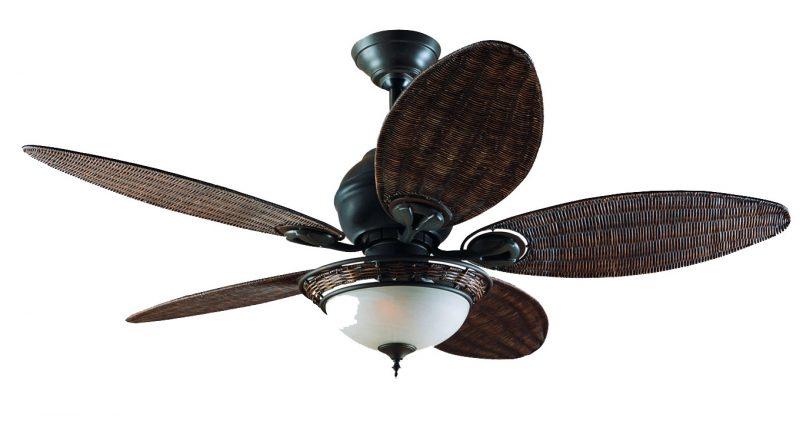 Ceiling Fan Hunter