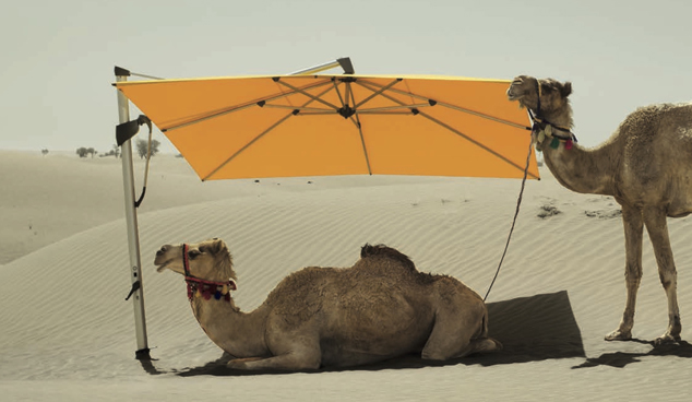 Hanging Umbrella in Dubai Desert
